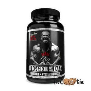 rich-piana-bigger-by-the-day-5%-nutrition-fit-cookie